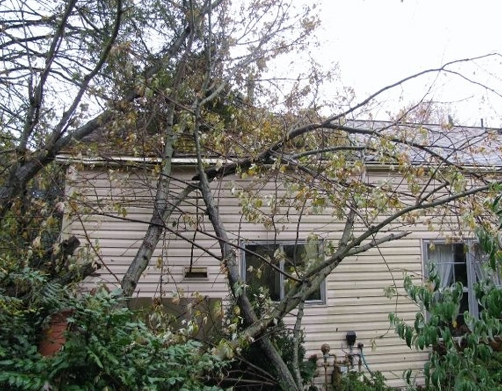 Storm Damage Repair New Jersey